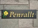 welsh slate house plaque with daffodil